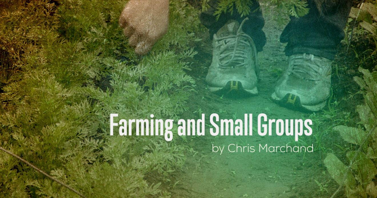 Farming and Small Groups